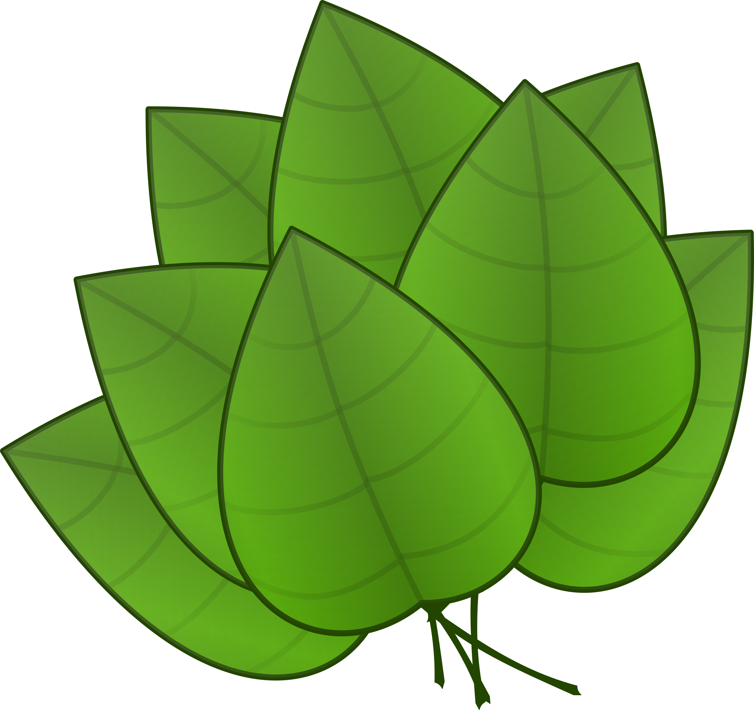 Leaves clipart big leaf Leaves Leaves Clipart