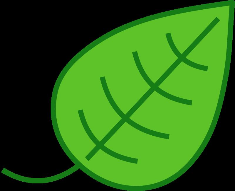 Leaves clipart single Art Leaf Clipart Image on