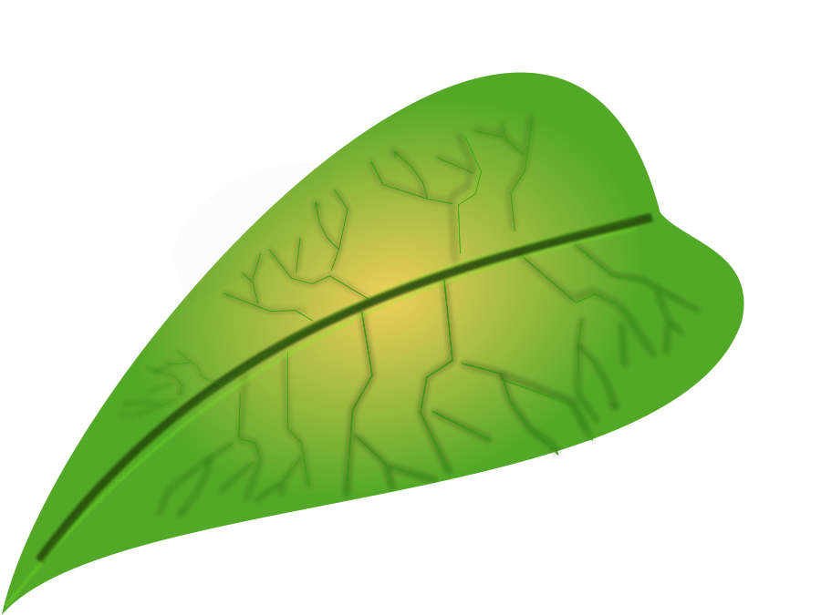 Ivy clipart big leaf  on Free Art Clip