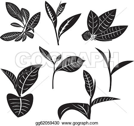 Mint clipart green leave Leaves Free Royalty GoGraph Clip
