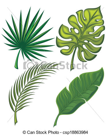 Leaves clipart tropical leaf #7