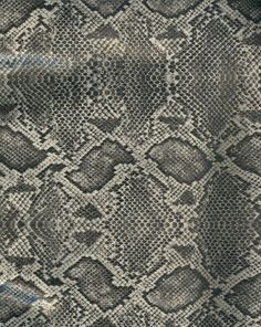 Leather Textures clipart snakeskin Skin Pin and Textures Find