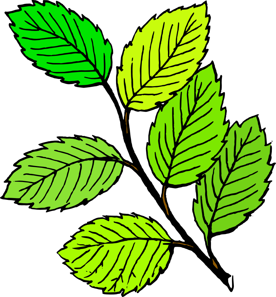 Leaves clipart Clipart Panda Images Free Free