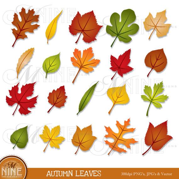 Leaves clipart autumn leaves Clipart Clipart art autumn leaves