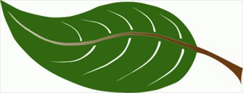 Leaves clipart big leaf – Art Art Big Clip