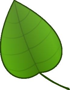 Leaves clipart big leaf Clip Clip vector Leaf free