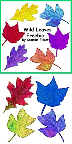 Leaves clipart colored #12