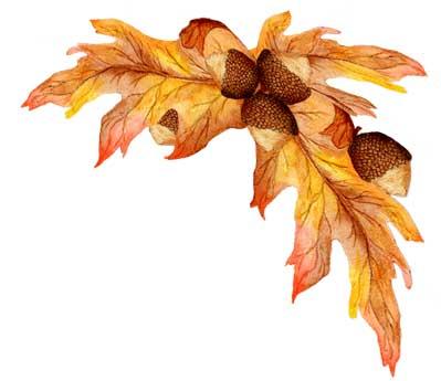 Leaves clipart corner Cluster Oak Leaf  399x345