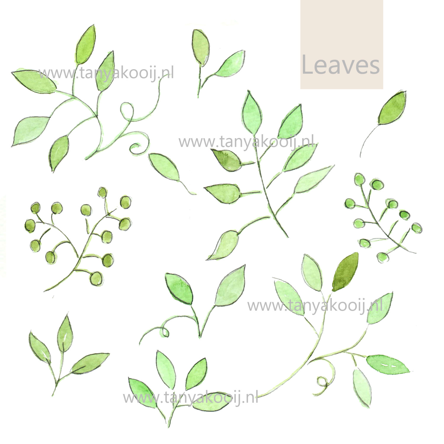 Branch clipart leave Watercolor digital leaves a Clipart