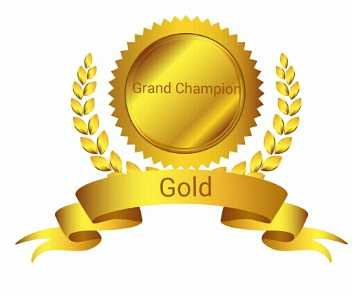 On Bronze/Silver/Gold/Platinum Denim 1:09:13 badges
