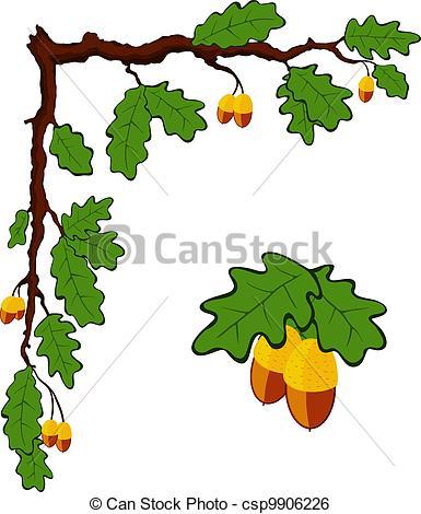 Branch clipart drawn Branch acorns vector  oak