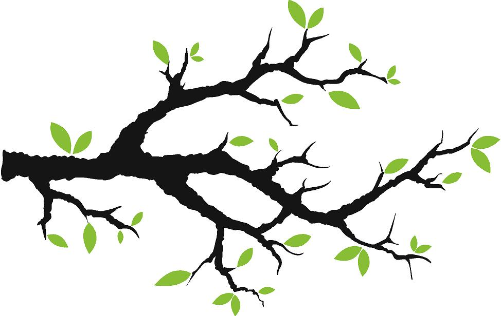 Tree clipart branch a #10