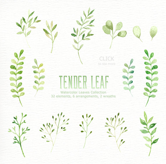 Leaves clipart wedding #10