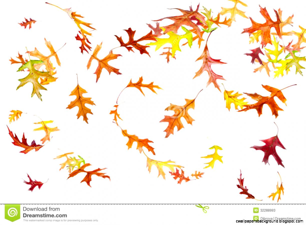 Leaves clipart windy Clip falling Clipart Leaves autumn