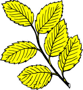 Leaves clipart yellow leaf #10