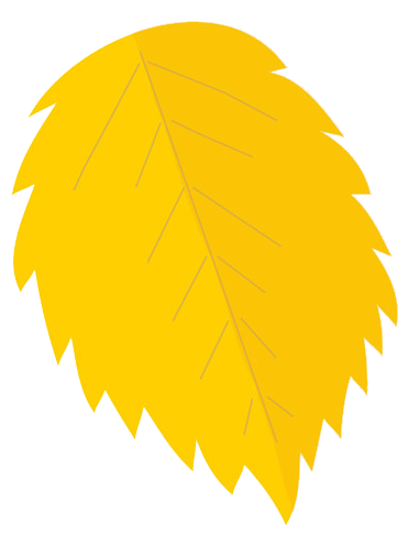 Leaves clipart yellow leaf #12