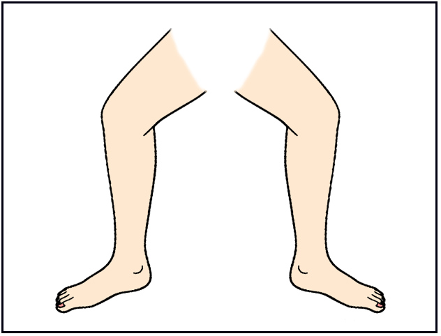 Legs clipart Clipart Art Download image Free