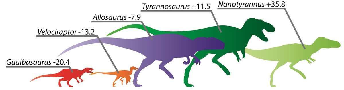 Scientist clipart dinosaur To to in length in
