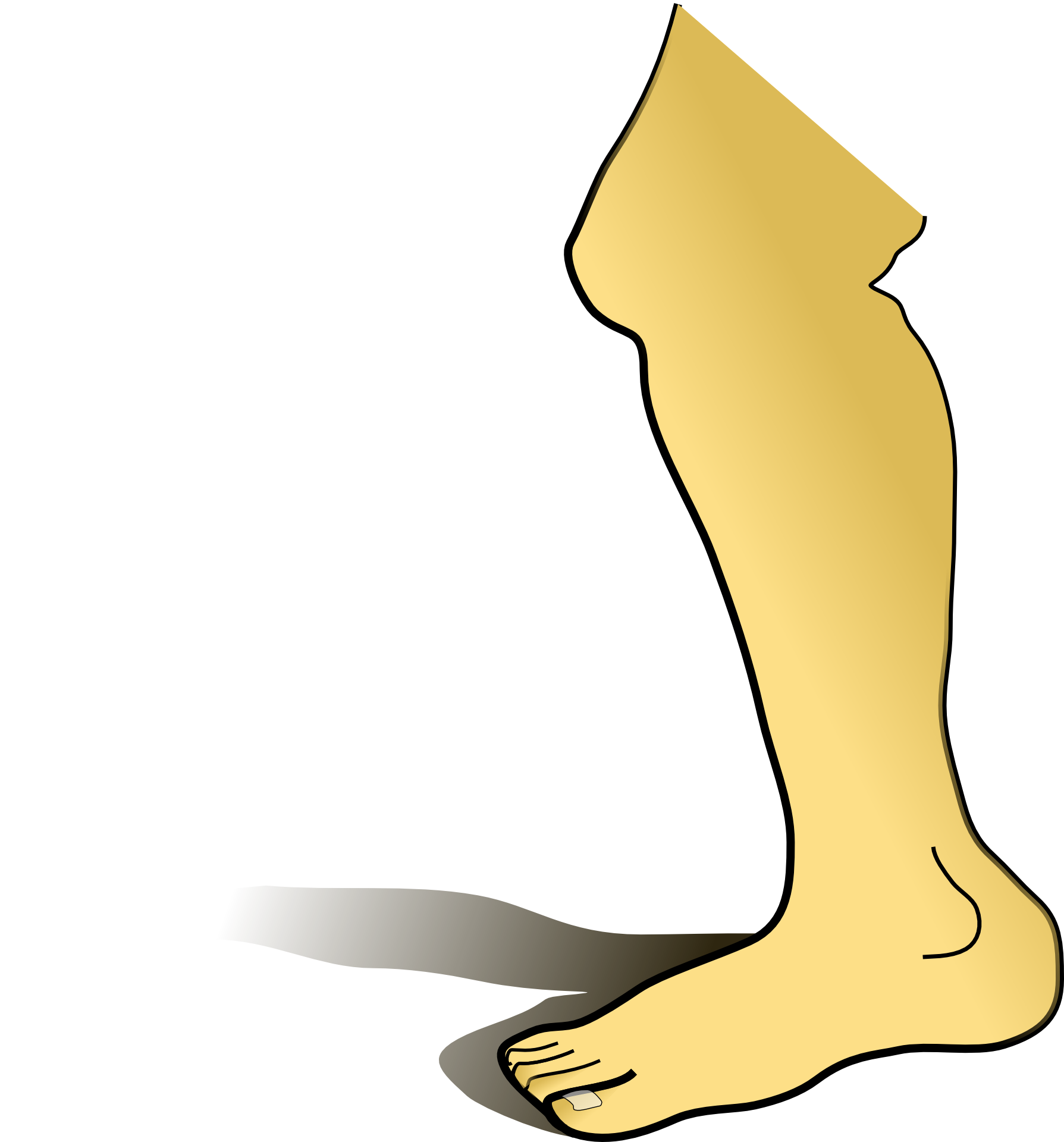 Legs clipart knee To  common the Do