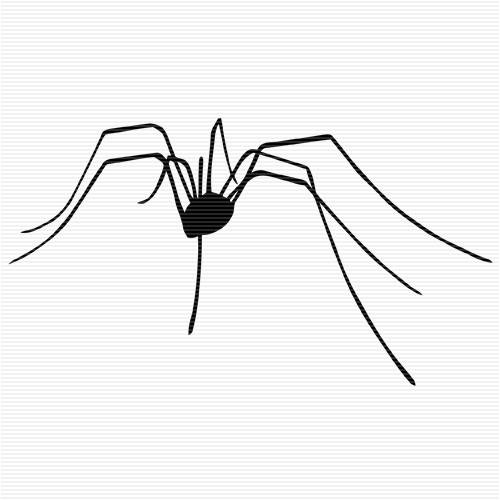 Legz clipart long leg Daddy Spider Art Pinterest