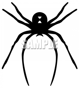Legz clipart long leg With Long Spider a Black