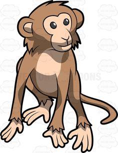 Legs clipart monkey Tree Swinging #campuchin Cute To