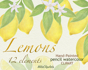 Lemon clipart painted Etsy greeting clipart watercolor Lemon