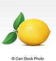 Lemon clipart small Vector Orange  Graphics clip