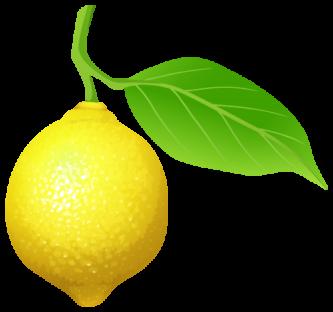 Lemon clipart small Lemon Clipart Lemon ClipartPen Clipart
