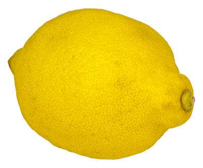 Lemon clipart small Free lemon Art Lemon page