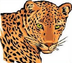 Leopard clipart Free Leopard Clipart Leopard