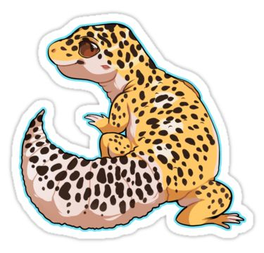 Leopard Lizard clipart abstract Images about My Gecko Pinterest