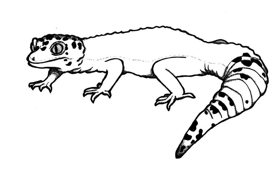 Leopard Lizard clipart Our New Baby Pet Dinosaur