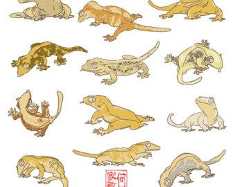 Leopard Lizard clipart crested Rex Ball Dinosaur T Fossil
