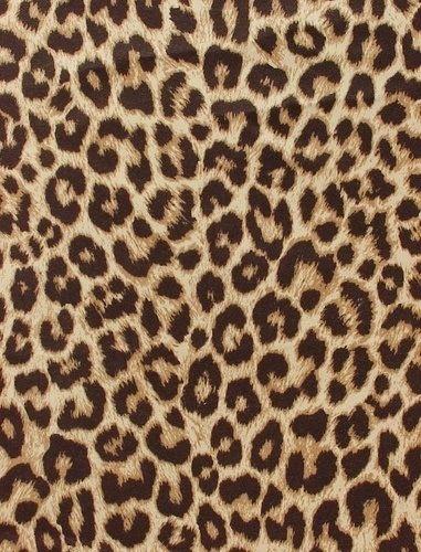 Leopard Skin clipart background Leopard on Pinterest S5 Print