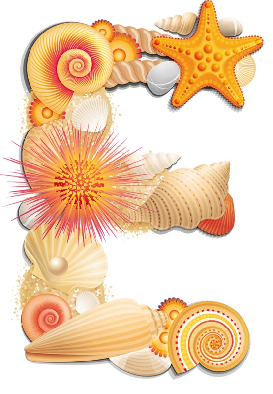 Letter clipart beach Beach Letters 26 Shelly images