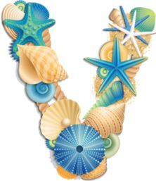 Letter clipart beach Seashell Beach by Letter ۞