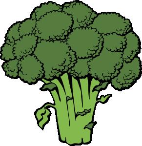 Lettuce clipart Free Images White Lettuce Clipart