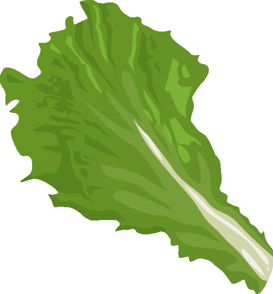 Lettuce clipart Clipartix Lettuce clip art 2