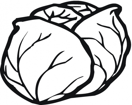 Cabbage clipart coloring 2 8 Lettuce free free