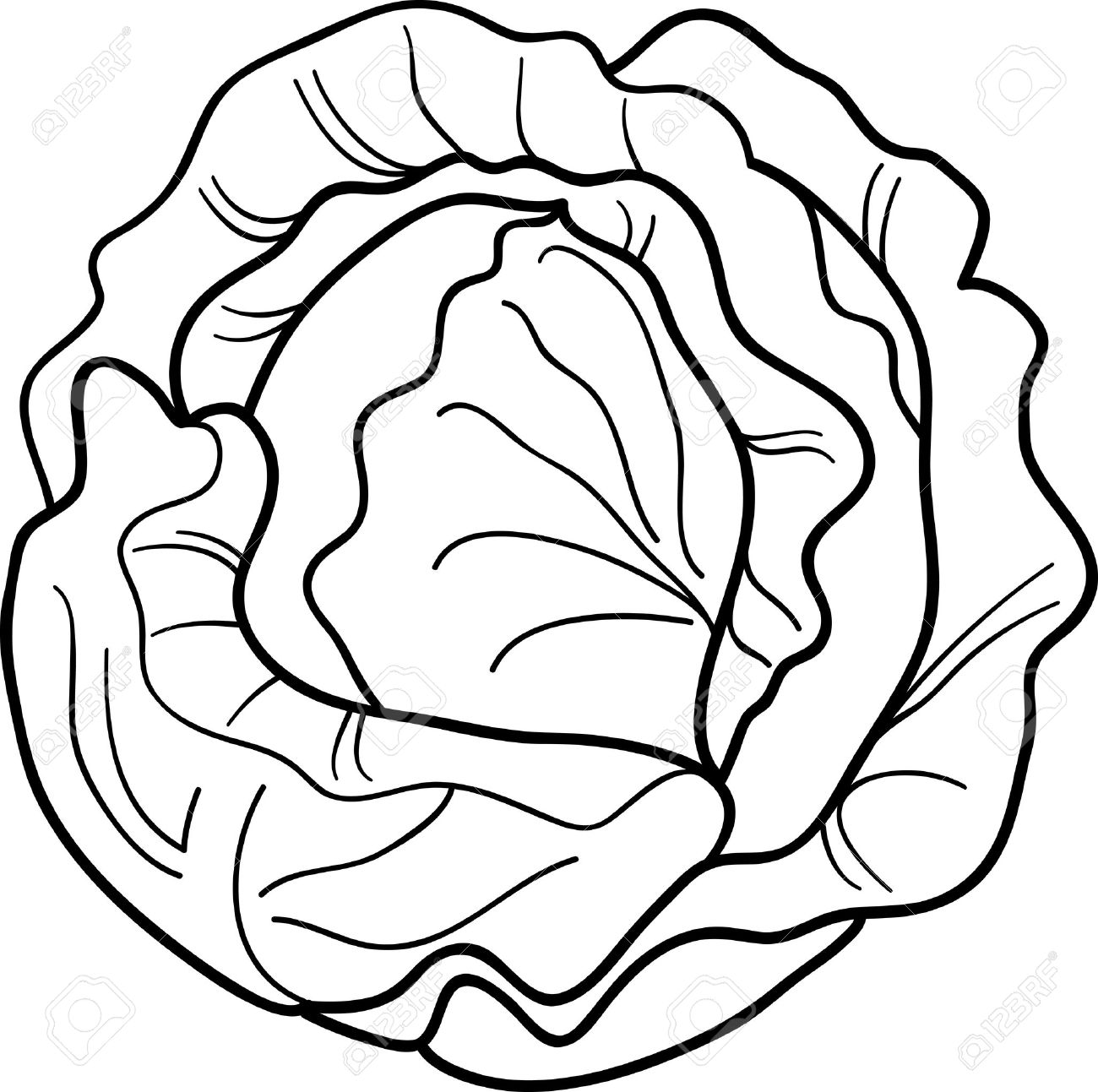 Cabbage clipart black and white Clipart Clipart Black Download Black