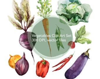 Carrot clipart lettuce Clip Vegetables clip Vegetable art