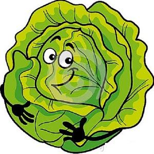 Cabbage clipart sayur ABC Hamza Sayuran Google Sayuran