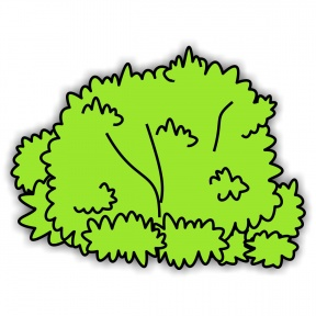 Hedges clipart shrubbery Lichen Zone Cliparts Shrub Cliparts