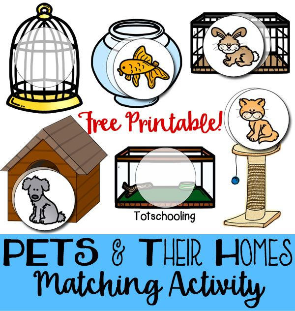Country clipart us symbol Pinterest and Pets game printable