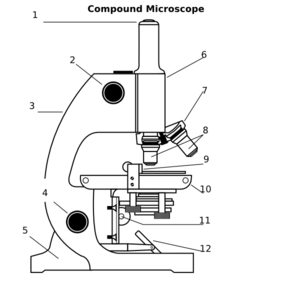 Light Microscopy clipart Compound clipart of 3 Parts