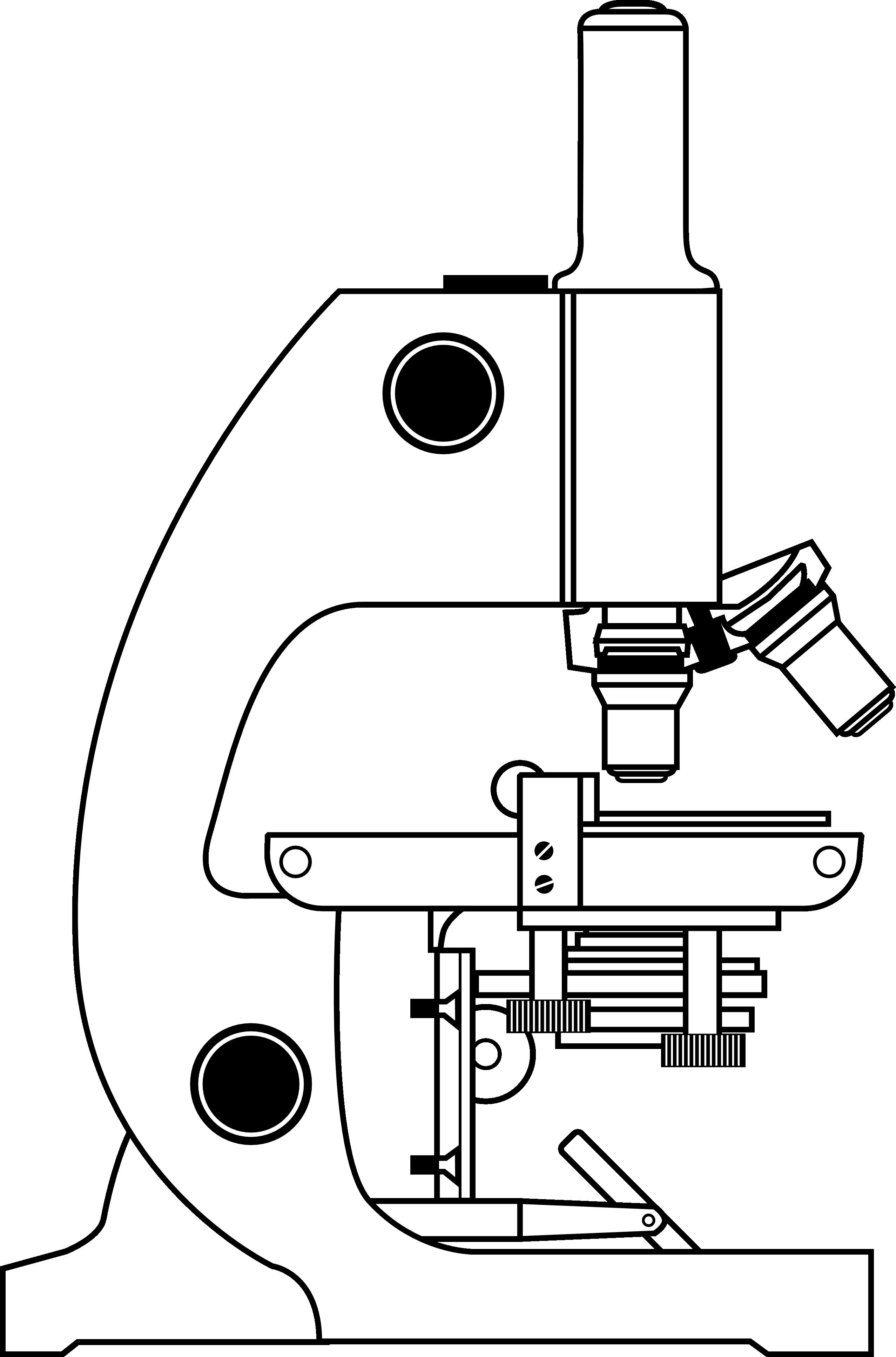 Light Microscopy clipart Download microscope clipartfest ClipartBarn Light