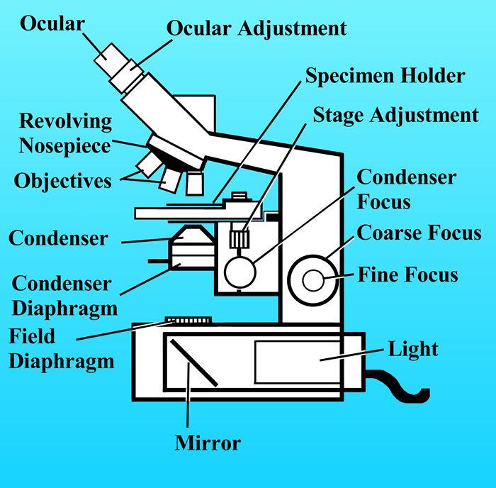Microscope a Binoculars MICROSCOPE and