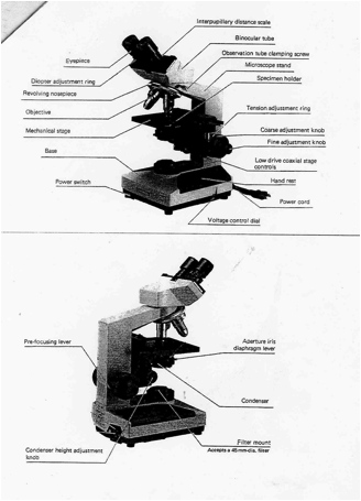 Light Microscopy clipart compund Find  compound Of microscope