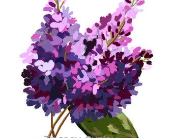 Lilac clipart Lilac Lilacs art lilac art
